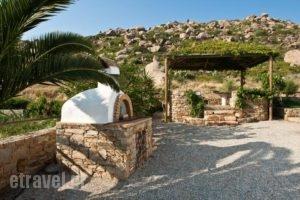 Zefyros studios_lowest prices_in_Apartment_Cyclades Islands_Naxos_Naxos Chora