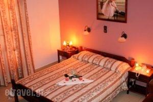 Golden Beach Studios_accommodation_in_Hotel_Cyclades Islands_Naxos_Naxos chora