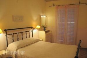 Simatos_accommodation_in_Apartment_Ionian Islands_Kefalonia_Argostoli