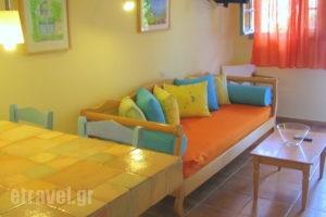 Simatos_best prices_in_Apartment_Ionian Islands_Kefalonia_Argostoli