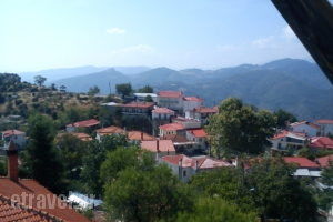 Aeropi_holidays_in_Room_Macedonia_Grevena_Kranea - Krania