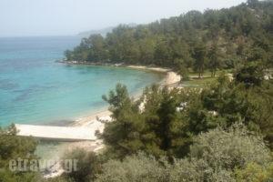 Villa Victoria_travel_packages_in_Aegean Islands_Thasos_Thasos Rest Areas