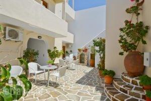 Margo Studios_accommodation_in_Hotel_Cyclades Islands_Naxos_Naxos chora