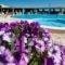 Golden Sun Hotel_accommodation_in_Hotel_Cyclades Islands_Naxos_Naxos chora