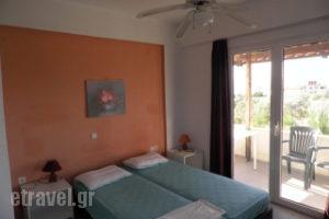 Ktima-Lila_holidays_in_Room_Peloponesse_Argolida_Thermisia