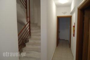 Argyro_best deals_Apartment_Macedonia_Halkidiki_Flogita