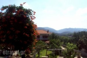 Villa Tonia_accommodation_in_Villa_Macedonia_Halkidiki_Toroni