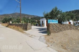 Blue Fish_lowest prices_in_Hotel_Cyclades Islands_Sifnos_Sifnos Chora