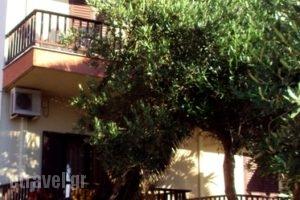 Markos_lowest prices_in_Hotel_Macedonia_Halkidiki_Ierissos