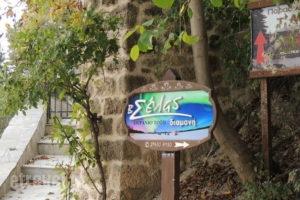 Xenonas Selas_travel_packages_in_Peloponesse_Korinthia_Evrostina