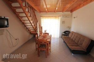 9 Muses_accommodation_in_Apartment_Peloponesse_Messinia_Gargaliani