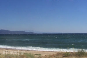 Dionysus_best prices_in_Room_Macedonia_Halkidiki_Ouranoupoli