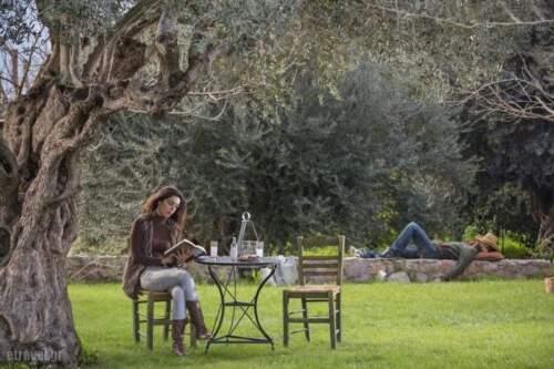 Ecotourism Vacation Proposals